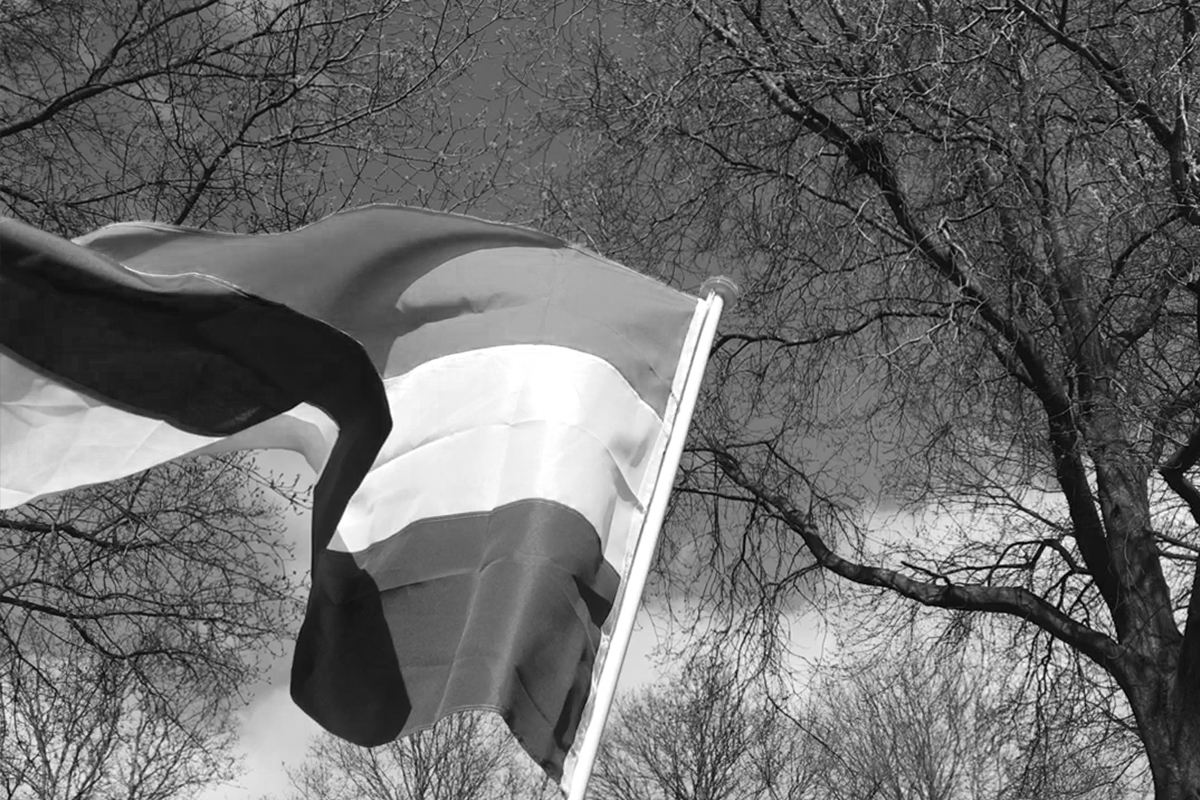 Vlaggen voor de vrijheid